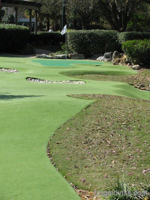 Professional Level Miniature Golf Extra Walt Disney